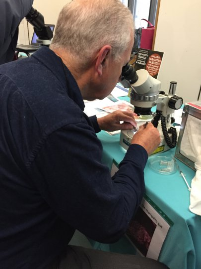"MVI partnered with Imperial College London on a display on ""counting malaria parasites"" at the UK event. Photo credit: PATH Malaria Vaccine Initiative"